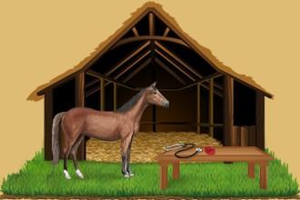 Kümmere dich um die Pferde der anderen Züchter in deiner Reitschule, damit sie mit Hilfe der Angestellten deiner Reitschule fortschreiten.